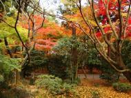 Asisbiz Rokuon ji Temple outdoor zen Gardens Kyoto Japan Nov 2009 04