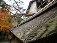 Asisbiz Ryoan ji Hojo Teien Karesansui outer wall Kyoto Japan Nov 2009 03