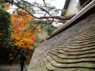 Asisbiz Ryoan ji Hojo Teien Karesansui outer wall Kyoto Japan Nov 2009 04