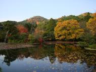 Asisbiz Ryoan ji Kyoyochi Pond Kyoto Japan Nov 2009 02