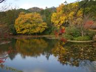 Asisbiz Ryoan ji Kyoyochi Pond Kyoto Japan Nov 2009 05