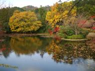 Asisbiz Ryoan ji Kyoyochi Pond Kyoto Japan Nov 2009 06