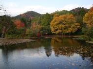 Asisbiz Ryoan ji Kyoyochi Pond Kyoto Japan Nov 2009 08