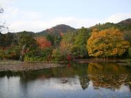 Asisbiz Ryoan ji Kyoyochi Pond Kyoto Japan Nov 2009 09