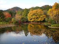 Asisbiz Ryoan ji Kyoyochi Pond Kyoto Japan Nov 2009 10