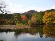 Asisbiz Ryoan ji Kyoyochi Pond Kyoto Japan Nov 2009 11