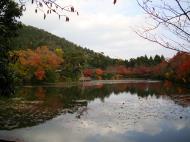Asisbiz Ryoan ji Kyoyochi Pond Kyoto Japan Nov 2009 18