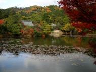 Asisbiz Ryoan ji Kyoyochi Pond Kyoto Japan Nov 2009 20