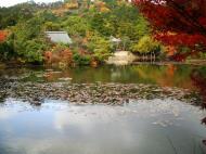 Asisbiz Ryoan ji Kyoyochi Pond Kyoto Japan Nov 2009 21