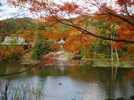 Asisbiz Ryoan ji Kyoyochi Pond Kyoto Japan Nov 2009 25