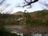 Asisbiz Ryoan ji Kyoyochi Pond Kyoto Japan Nov 2009 27