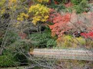 Asisbiz Ryoan ji Kyoyochi Pond Kyoto Japan Nov 2009 30