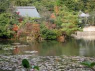 Asisbiz Ryoan ji Kyoyochi Pond Kyoto Japan Nov 2009 32