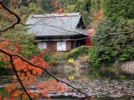 Asisbiz Ryoan ji Kyoyochi Pond Kyoto Japan Nov 2009 34