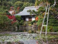 Asisbiz Ryoan ji Kyoyochi Pond Kyoto Japan Nov 2009 35
