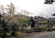 Asisbiz Cherry blossom season Tenryu sect Rinzai Zen Buddhist temple 2010 01