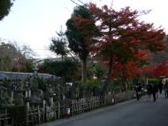 Asisbiz May Peace Prevail on Earth Garden Kyoto Japan Nov 2009 10