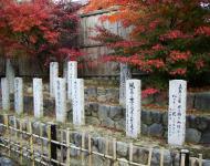 Asisbiz May Peace Prevail on Earth Garden Kyoto Japan Nov 2009 12