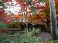 Asisbiz Tenryu ji Sogenchi Rinzai Zen garden Kyoto 2009 07