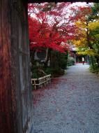 Asisbiz Tenryu ji Sogenchi area guest house Kyoto 2009 01