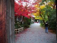 Asisbiz Tenryu ji Sogenchi area guest house Kyoto 2009 02