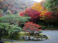 Asisbiz Tenryu ji Sogenchi area guest house Kyoto 2009 13