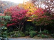 Asisbiz Tenryu ji Sogenchi area guest house Kyoto 2009 15