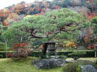 Asisbiz Tenryu ji Sogenchi area guest house Kyoto 2009 16