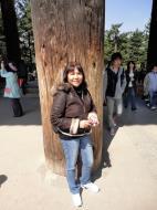 Asisbiz 1 Great Southern Gate Nandaimon ginormous pine pillars 01