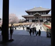 Asisbiz 1 Todai ji Buddhist temple complex underneath the middle gate looking in 02