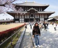 Asisbiz 1 Todai ji main walkway leading to grandiose Daibutsuden Nara Japan 01