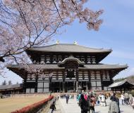 Asisbiz 1 Todai ji main walkway leading to grandiose Daibutsuden Nara Japan 03