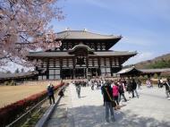 Asisbiz 1 Todai ji main walkway leading to grandiose Daibutsuden Nara Japan 04