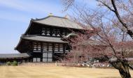 Asisbiz 1 Todaiji is grand in proportion largest wooden building and Buddha statue Japan 05