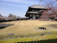 Asisbiz 1 Todaiji is grand in proportion largest wooden building and Buddha statue Japan 06