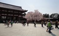 Asisbiz 5 Todai ji middle gate architecture wooden structure Nara Japan 01