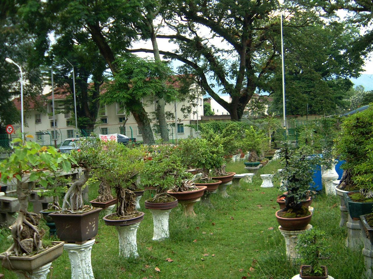 Penang Chinese Monastery Mar 2001 04