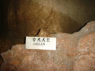 Asisbiz Ipoh Sam Poh Tong Monastery Cave Gorila Jul 2000 01