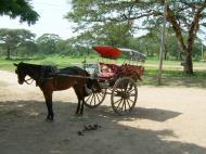 Asisbiz Horse and cart Pagan Oct 2004 01