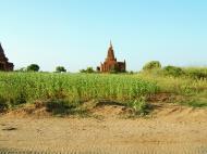 Asisbiz Panoramic views Bagan Myanmar Dec 2000 117