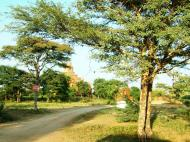 Asisbiz Panoramic views Bagan Myanmar Dec 2000 124