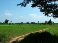 Asisbiz Panoramic views Bagan Myanmar Dec 2000 58