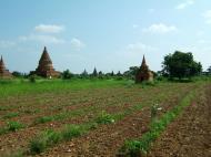 Asisbiz Panoramic views Bagan Myanmar Dec 2000 75