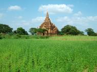 Asisbiz Panoramic views Bagan Myanmar Dec 2000 77