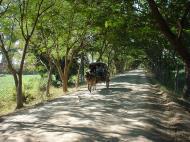 Asisbiz Bagaya Kyaung Monastery road to Mandalay Jan 2001 02