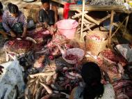 Asisbiz Local cottage industry farming dried catfish production Butchery 03