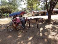 Asisbiz Hlwaga Lake Pagoda horse and carts Mingaladon Yangon Myanmar 2010 01