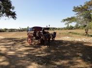 Asisbiz Hlwaga Lake Pagoda horse and carts Mingaladon Yangon Myanmar 2010 02