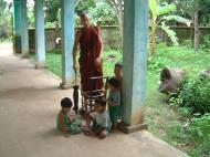Asisbiz Hmawbi monastery Lizard Jul 2001 11