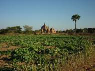 Asisbiz Bagan Htilominlo Temple Nandaungmya Myanmar Dec 2000 08